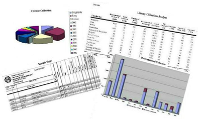 Collections Analysis