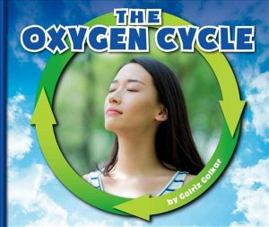 50263373 oxygen cycle