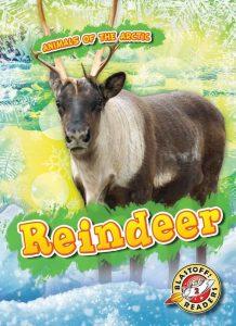 9781626179394 reindeer