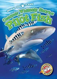 9781626179578 pilot fish