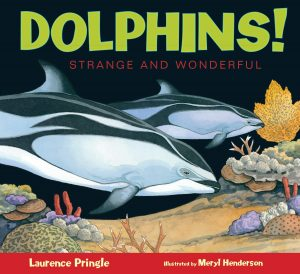 9781629796802 dolphins strange and wonderful