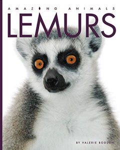 9781640260368 amazing animals lemurs