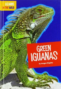 9781681515588 lizards in the wild green iguanas