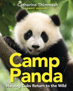camp panda thimmesh 2019 sibert honor book