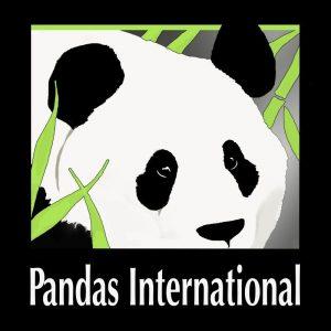 pandas international square logo