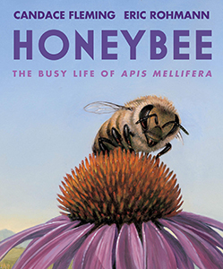 341173 honeybee the busy life of apis mellifera